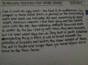 August 2014_Poem 18_Searching Tide Pools for Shore Crabs