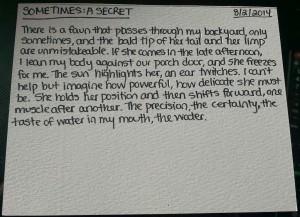 August 2014_Poem 2_Sometimes A Secret