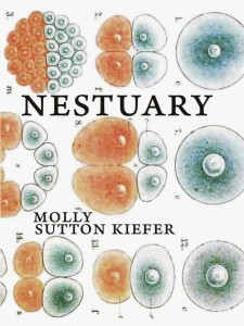 Molly Sutton Kiefer_Nestuary